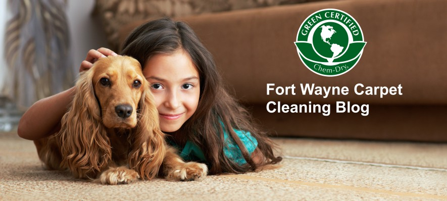 Fort Wayne Carpet Cleaning Blog Carpet Cleaning